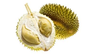 Thailand golden pillow Durian